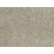 Cormar Soft Focus Carpet - Barley