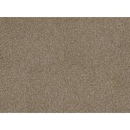 Cormar Apollo Plus Carpet - Boxwood