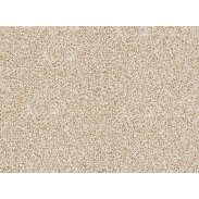 Cormar Apollo Plus Carpet - Summer Sand