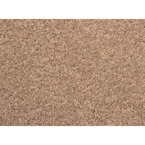 Abingdon Stain Free Boutique Twist Pile Carpet - Oyster Shell
