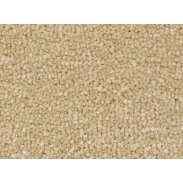 Cormar Primo Plus - Canadian Oak Carpet