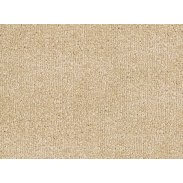 Cormar Apollo Plus Carpet - Beach Beige